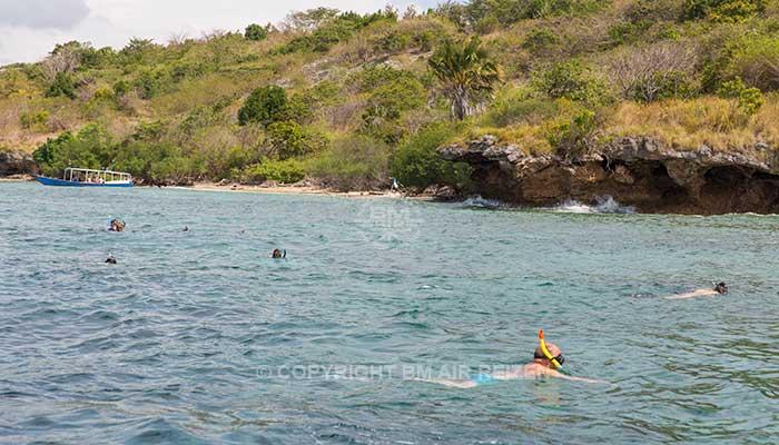 Snorkelen menjangen island