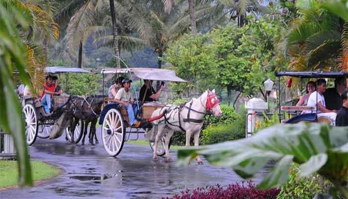 Magelang - Andhong village tour