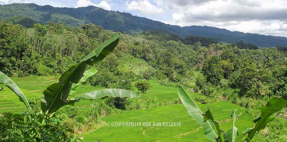 Sumatra - Sipirok