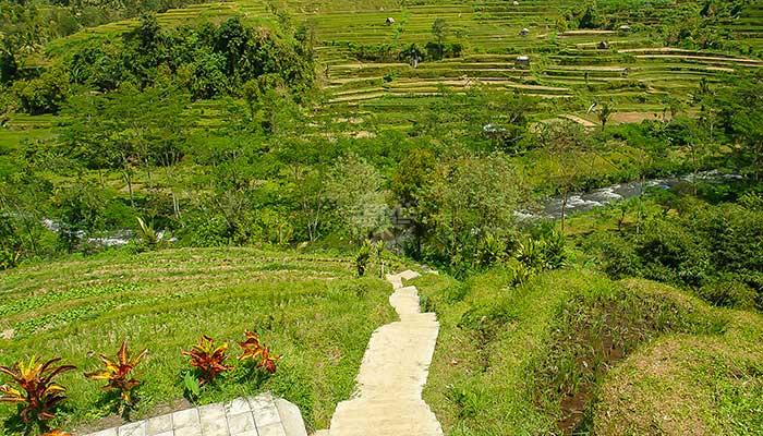 Bali - Telaga Waja Raften