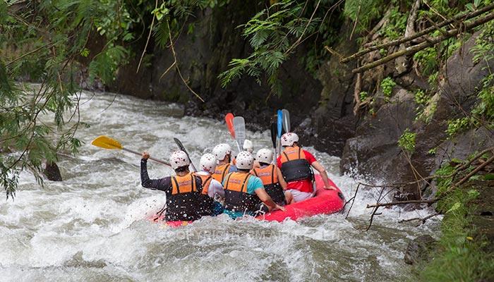 Ubud - Ayung River rafting