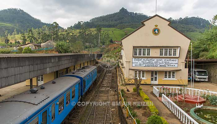 Treinreis van Nanu-Oya naar Bandarawela