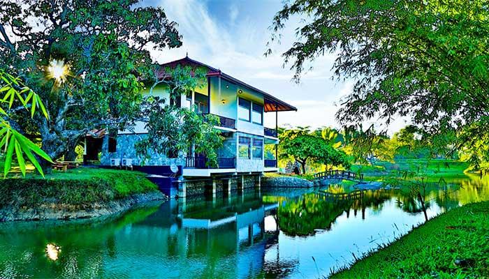 Yapahuwa - Yapahuwa Paradise Hotel