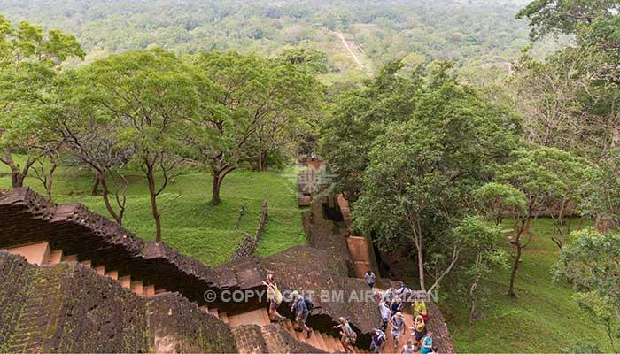 Sigiriya - Leeuwenrots