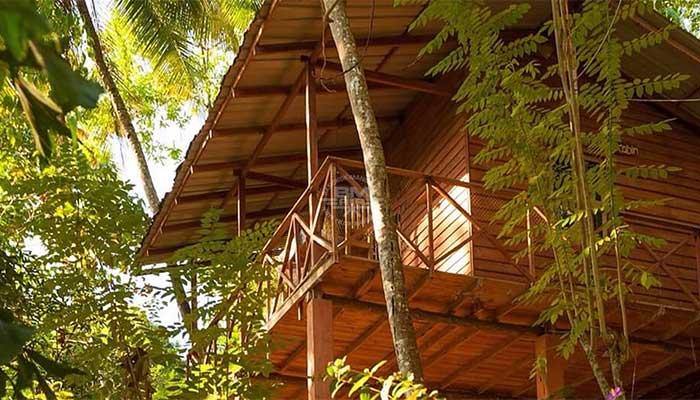 Digana - Polwaththa Eco Lodge