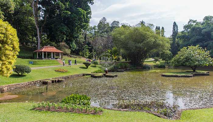 Peradeniya - botanische tuin