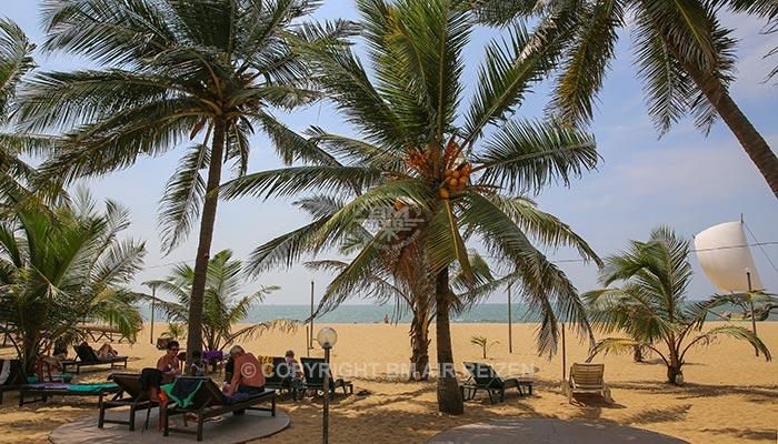 Negombo - strand