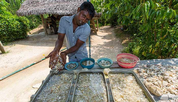 Koggala - Ambalangoda