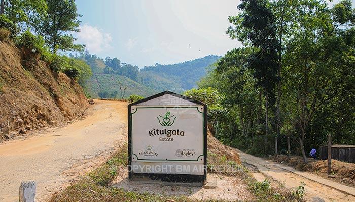 Kitulgala
