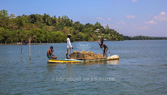 Madu River - boottocht