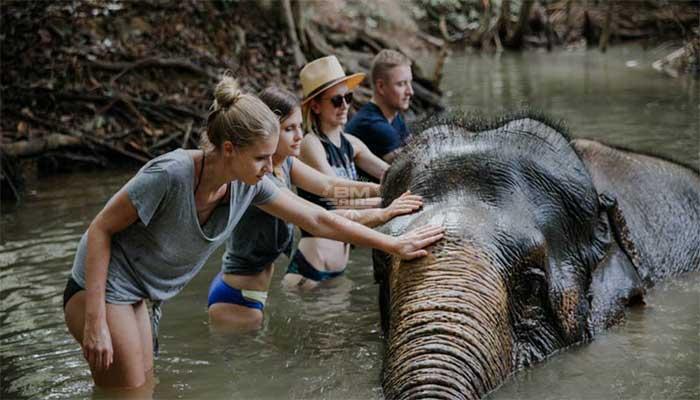 Khao Sok Elephant Sanctuary