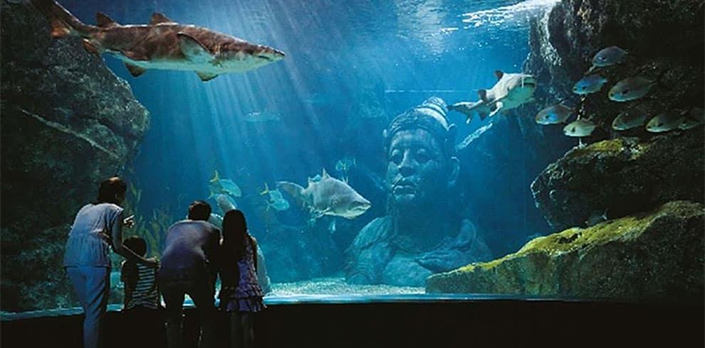 Bangkok - Sea Life Ocean World